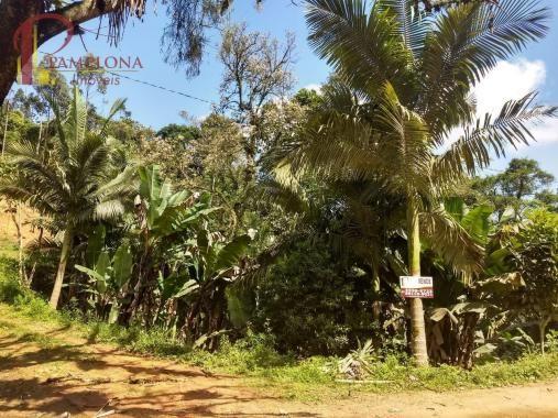 Sítio à venda em Ribeirão souto, Pomerode cod:1875 - Foto 3