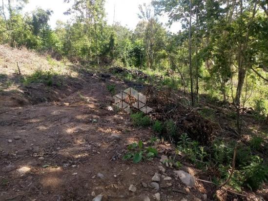 Terreno à venda em Vale dos vinhedos, Bento gonçalves cod:9889732 - Foto 4
