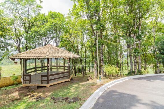 Chácara para alugar em Passaúna, Campo magro cod:8140 - Foto 6
