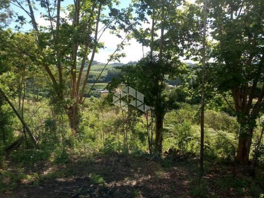 Terreno à venda em Vale dos vinhedos, Bento gonçalves cod:9889732 - Foto 10