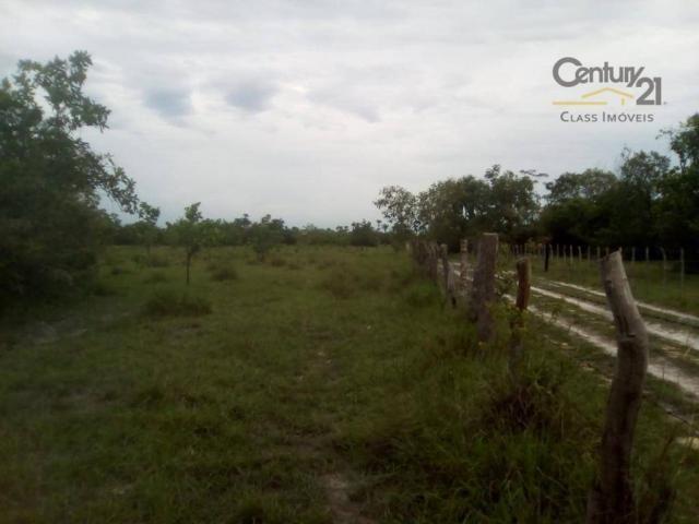 754 há em Barras Piauí