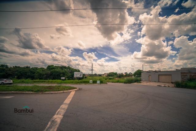 Terreno para alugar em Cardoso, Aparecida de goiânia cod:60208072 - Foto 4
