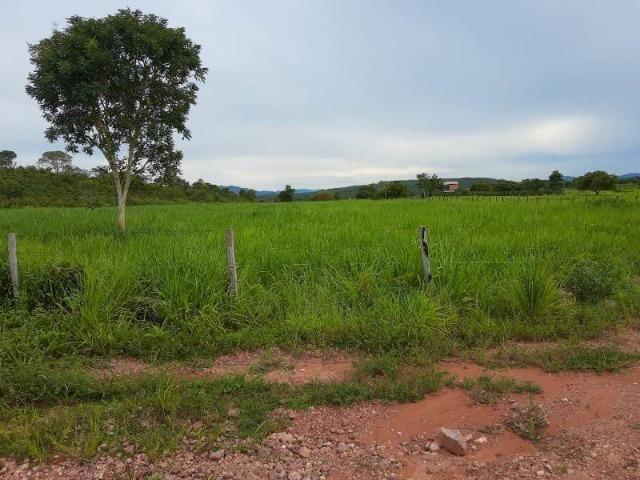 2.200 alqs Solo Argiloso Região De Chuva Palmeirópolis TO - Foto 13
