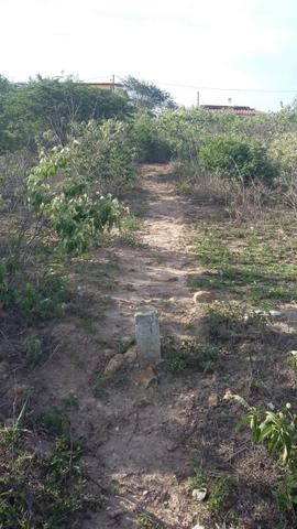 Um terreno no Loteamento Fazenda Riacho do Mel - Foto 5