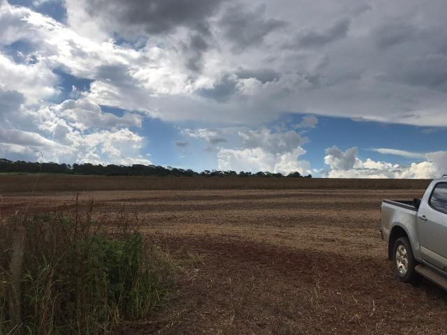 Fazenda excelente com Pivo - Foto 3