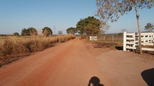 Fazenda 1.200 hectares á 20 km de Cuiabá - Foto 17
