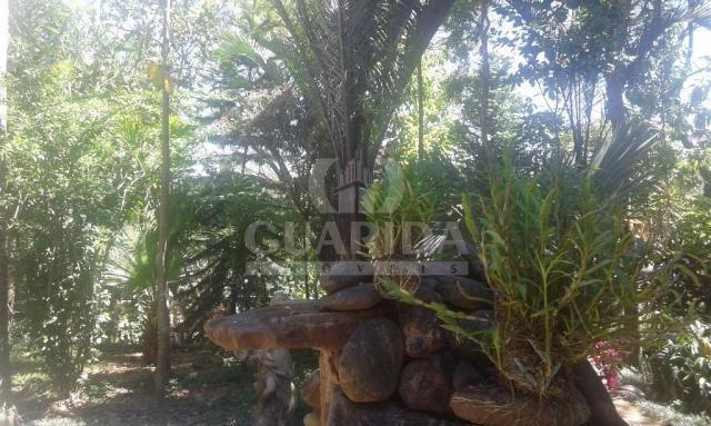Terreno à venda em Três figueiras, Porto alegre cod:55885 - Foto 4