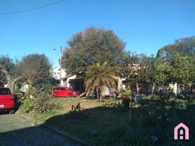 Casa à venda com 4 dormitórios em Desvio rizzo, Caxias do sul cod:2909 - Foto 3