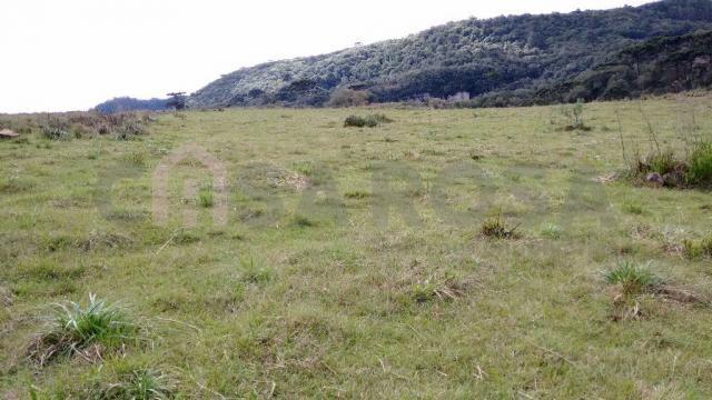 Terreno à venda em Fazenda souza, Caxias do sul cod:298 - Foto 3