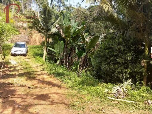 Sítio à venda em Ribeirão souto, Pomerode cod:1875 - Foto 4