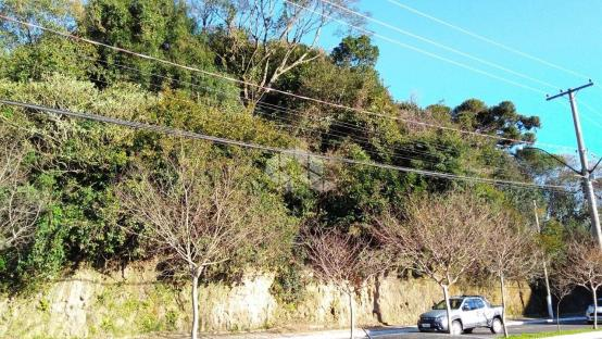 Terreno à venda em São francisco, Garibaldi cod:9908786 - Foto 3