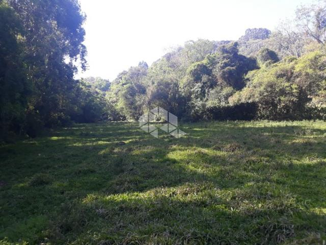 Chácara à venda em São luiz de castro, Boa vista do sul cod:9912945 - Foto 4