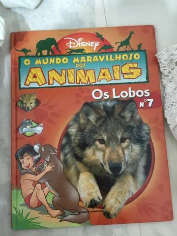 Livro infantil - Foto 2