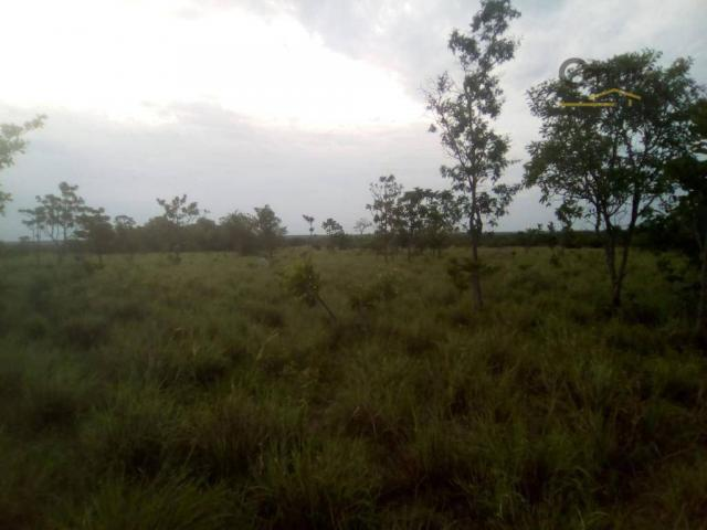 754 há em Barras Piauí - Foto 2