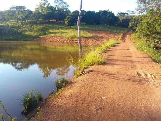 Urgente 20 hectares planalmira 35 km Anápolis. - Foto 20