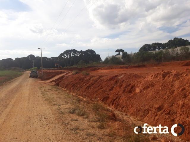 Terreno à venda em Centro, Contenda cod:526 - Foto 10