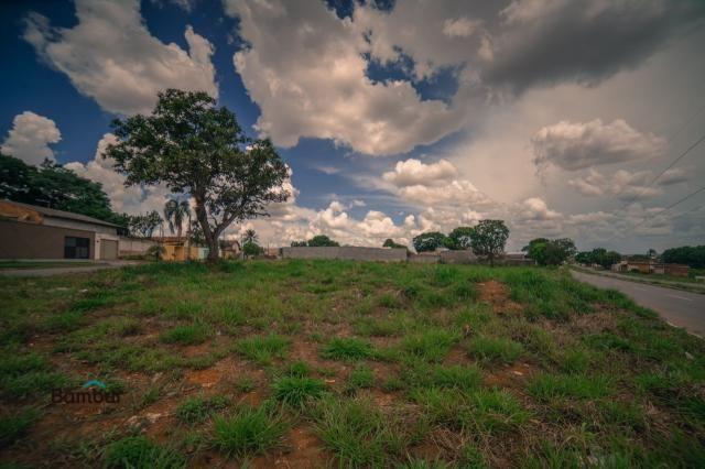 Terreno para alugar em Cardoso, Aparecida de goiânia cod:60208072 - Foto 2