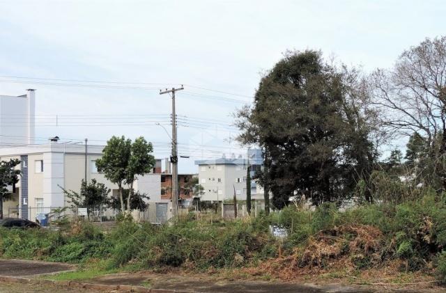 Terreno à venda em Universitário, Bento gonçalves cod:9906888 - Foto 2