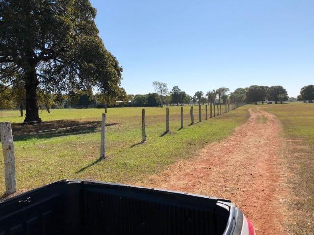 Fazenda 1.200 hectares á venda em Poconé MT - Foto 3