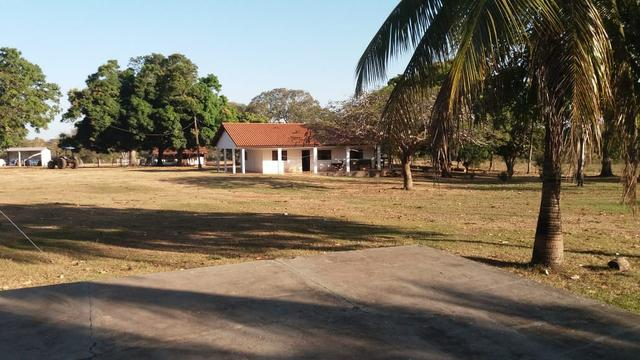 Fazenda 1.200 hectares á 20 km de Cuiabá - Foto 19
