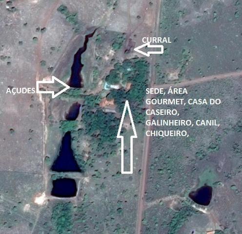 Fazenda 70 hectares á venda á 16km de Cuiabá - Foto 18