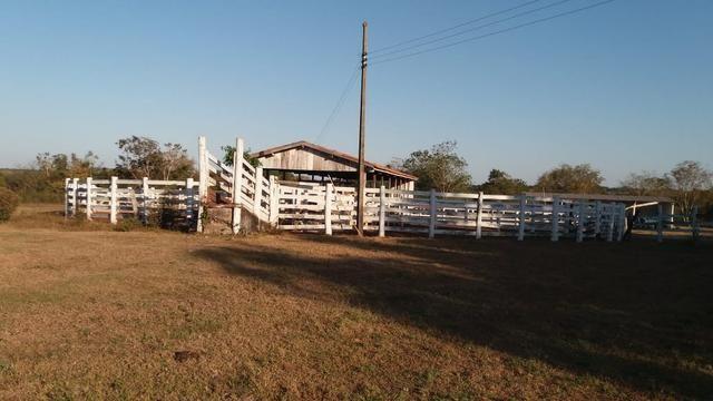 Fazenda 1.200 hectares á 20 km de Cuiabá - Foto 10