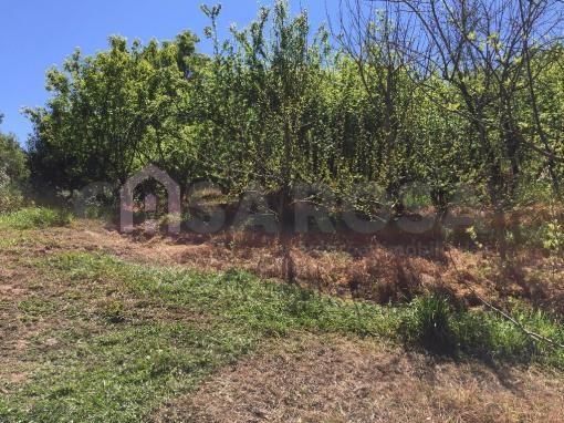 Terreno à venda em Ana rech, Caxias do sul cod:612 - Foto 3