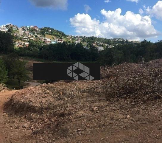 Terreno à venda em Santa helena, Bento gonçalves cod:9903094 - Foto 3