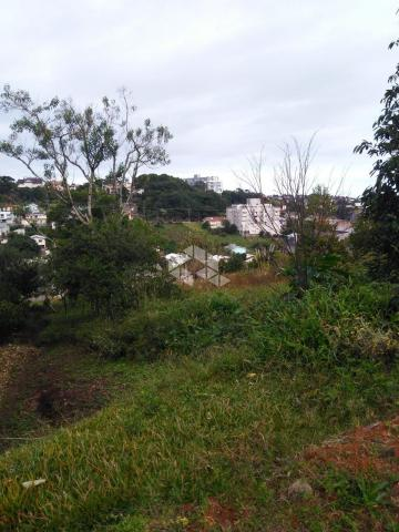 Terreno à venda em São francisco, Garibaldi cod:9908783 - Foto 4
