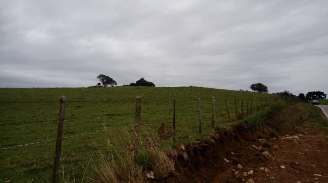Terreno à venda em Interior, Caxias do sul cod:1849 - Foto 2