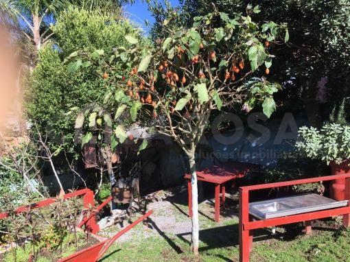 Casa à venda com 2 dormitórios em Serrano, Caxias do sul cod:1275 - Foto 12