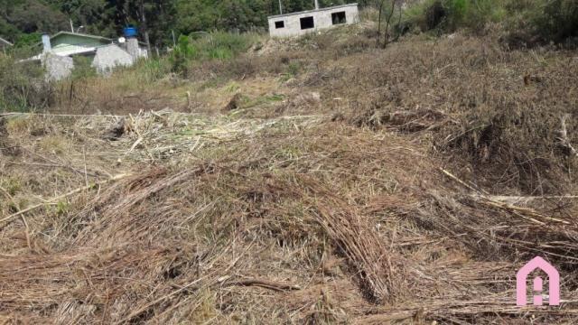 Terreno à venda em Colina dos plátanos, Caxias do sul cod:2708 - Foto 2
