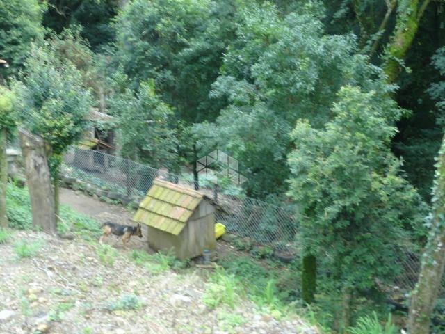 Terreno à venda em São francisco, Garibaldi cod:9904279 - Foto 6