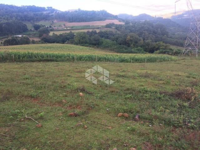 Chácara à venda em São luiz de castro, Boa vista do sul cod:9904527 - Foto 4