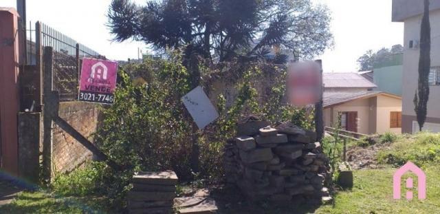 Terreno à venda em Desvio rizzo, Caxias do sul cod:2917 - Foto 3
