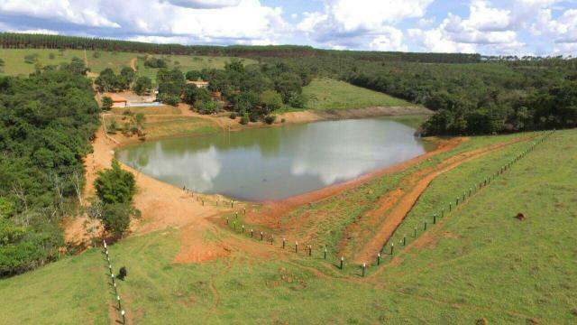 Urgente 20 hectares planalmira 35 km Anápolis. - Foto 3