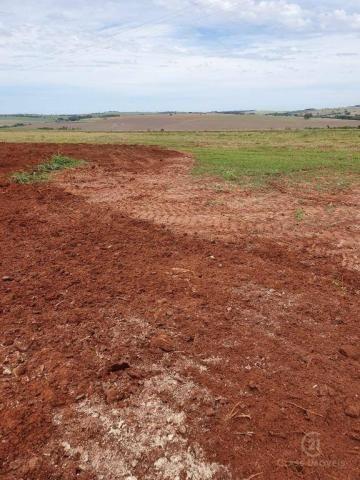 Fazenda 205 alqueires 150 lavoura
