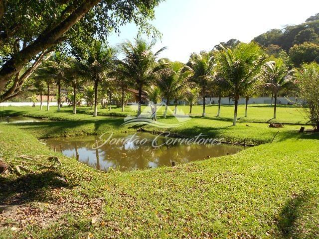 Jordão Corretores - Ótimo sítio 100% plano em Agrobrasil - Foto 11