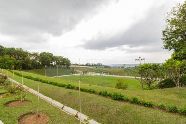 Chácara para alugar em Passaúna, Campo magro cod:8140 - Foto 20