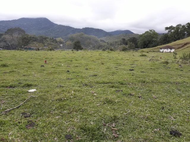 Jordão Corretores - Terrenos no centro do Guapiaçu