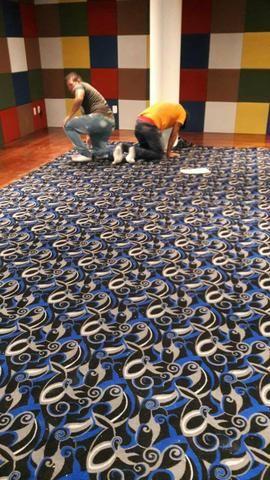 Instalação profissional de Carpetes - Foto 2