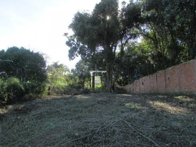 Terreno à venda em São lourenço, Curitiba cod:555 - Foto 2