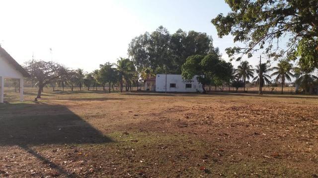 Fazenda 1.200 hectares á 20 km de Cuiabá - Foto 7