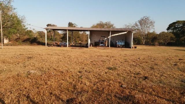 Fazenda 1.200 hectares á 20 km de Cuiabá - Foto 18