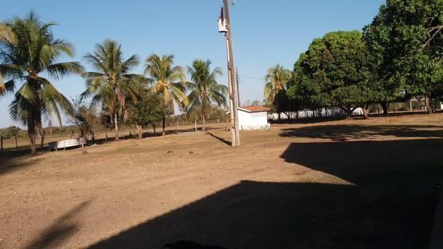 Fazenda 1.200 hectares á 20 km de Cuiabá - Foto 15