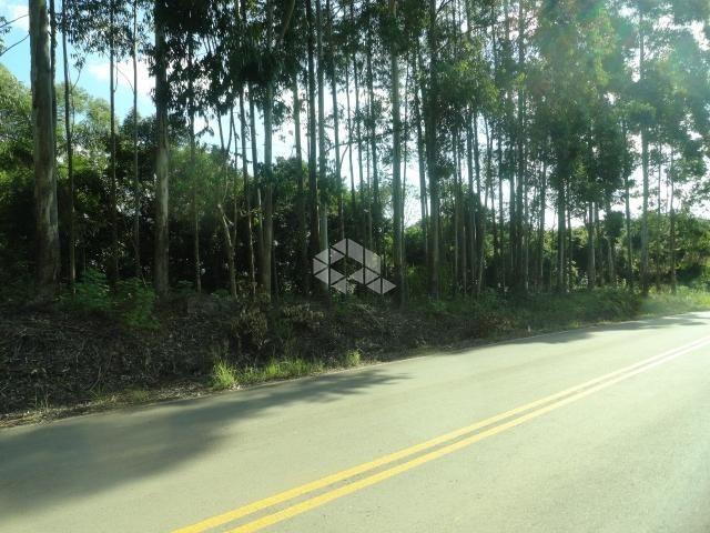 Chácara à venda em Centro, Coronel pilar cod:9904631 - Foto 3
