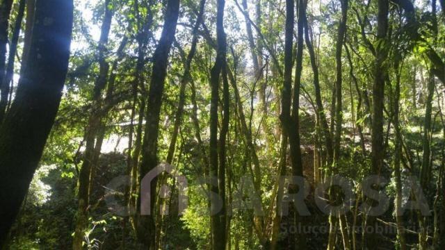 Terreno à venda em Monte bérico, Caxias do sul cod:2066 - Foto 4