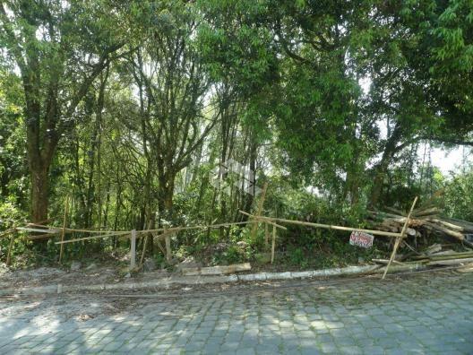 Terreno à venda em Santo antão, Bento gonçalves cod:9908551 - Foto 4