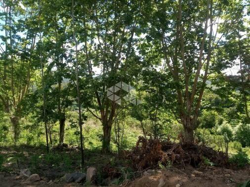 Terreno à venda em Vale dos vinhedos, Bento gonçalves cod:9889732 - Foto 5