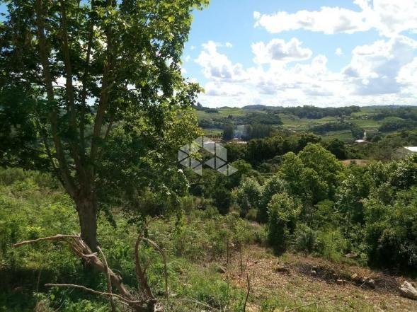 Terreno à venda em Vale dos vinhedos, Bento gonçalves cod:9889732 - Foto 8
